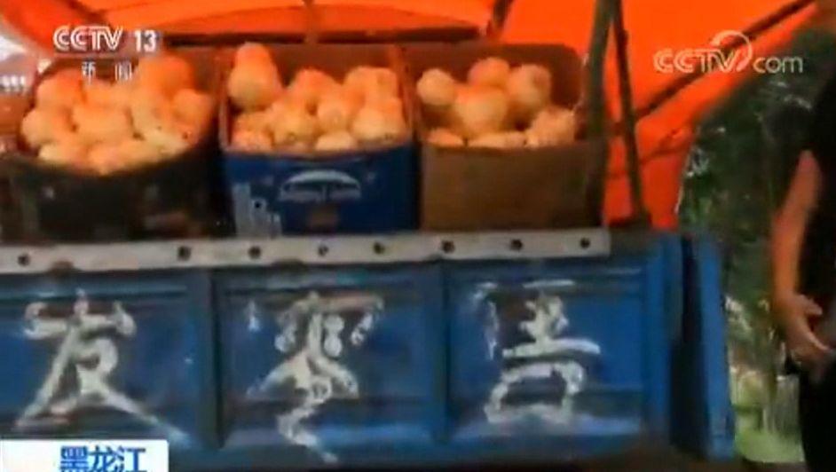 """央视曝光:""""嘎嘎甜""""的香瓜 瓜农自己却不愿吃 原因是……"""