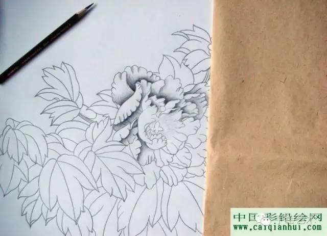 彩铅画国画牡丹教程 用彩色铅笔画一幅国画工笔牡丹花的图文图片