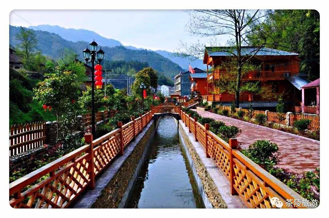 旅游 正文  万樟园林位于茶陵县严塘镇,园区以建设国家园林中等龙头图片