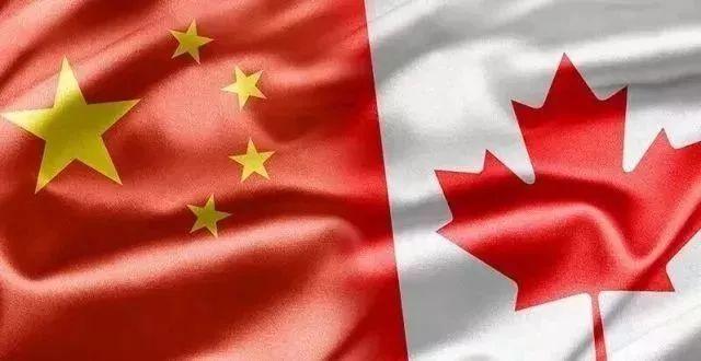 回国生活,还是继续留在加拿大?看看这些海外移民的真实想法