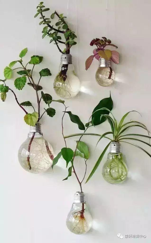 幼儿园手工制作盆栽花瓶