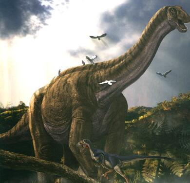 世界最大的恐龙易碎双腔龙,长35米比地震龙还庞图片