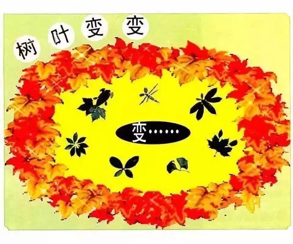 秋季主题墙——环创 秋天的菊花 责任编辑图片