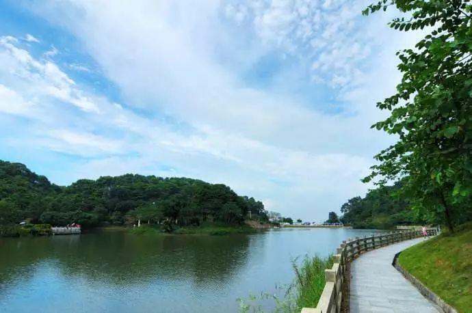 解救酷暑!广州周边这些避暑圣地带你清凉一夏!(图42)