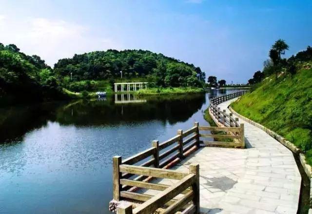 解救酷暑!广州周边这些避暑圣地带你清凉一夏!(图43)