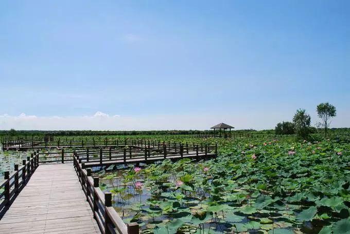 解救酷暑!广州周边这些避暑圣地带你清凉一夏!(图39)