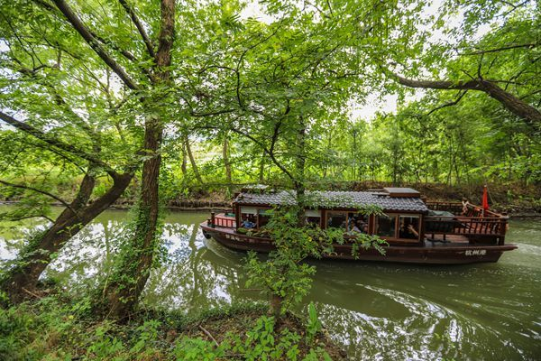 西溪湿地洪园绿色荡漾天真梦幻 原生态的美丽勾人魂魄