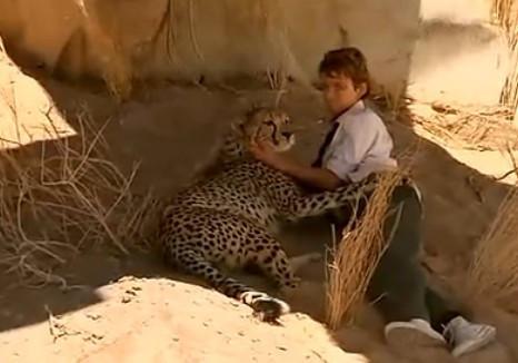 成人电影-人与动物_四部人与动物的电影,观看时务必备好纸巾,简直就是