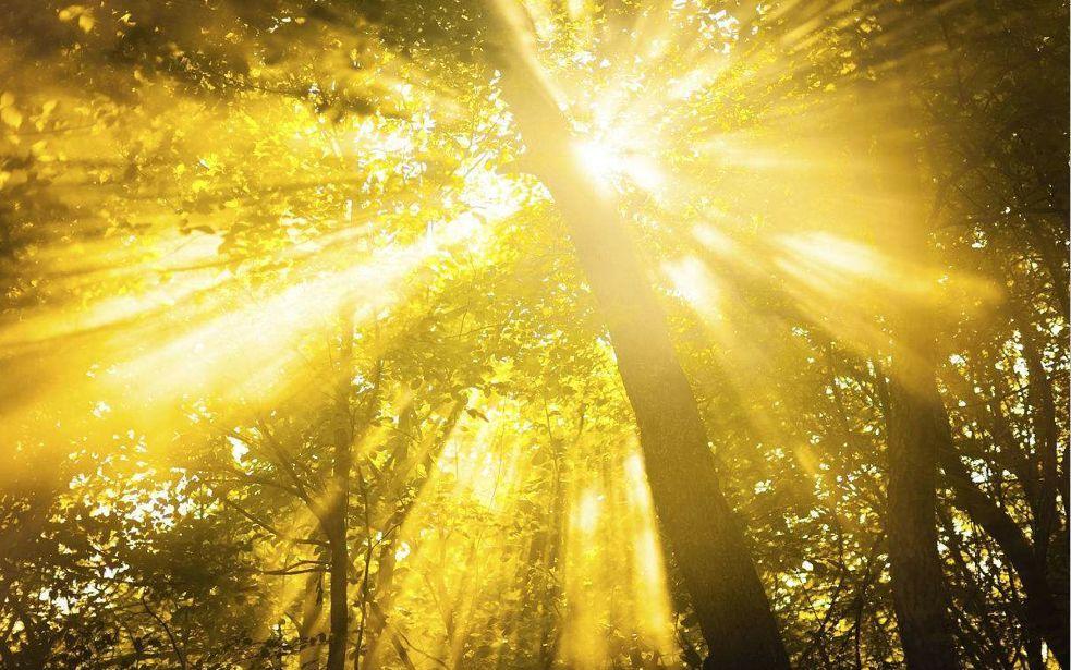 阿紫诗歌:《翻阅阳光》《娘的那扇窗》《如果有那样一个黄昏》《我一直在远方等你》《寂寞花开》《等我老了》朗读者:周志立(二黑)