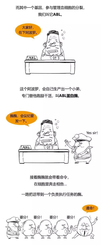 澳门太阳娱乐集团官网 10