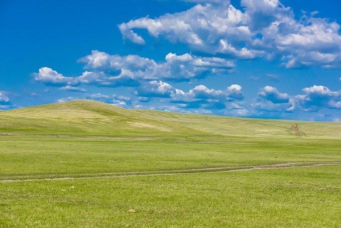 去大草原旅游,有三个项目非常值得体验,你玩过几个呢?