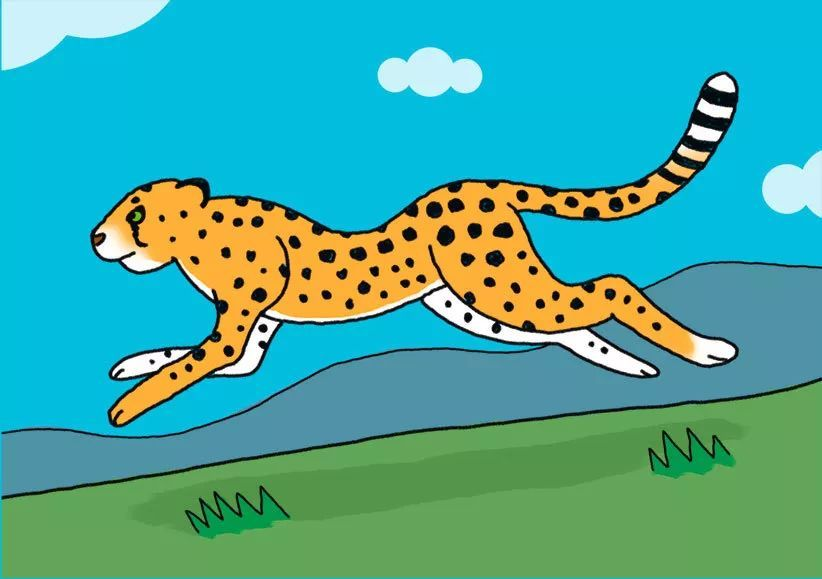 有趣的动物简笔画!猎豹与树懒图片