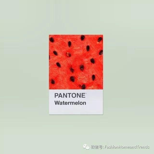 2019年春夏流行色彩水果主题之西瓜红#fashion色彩