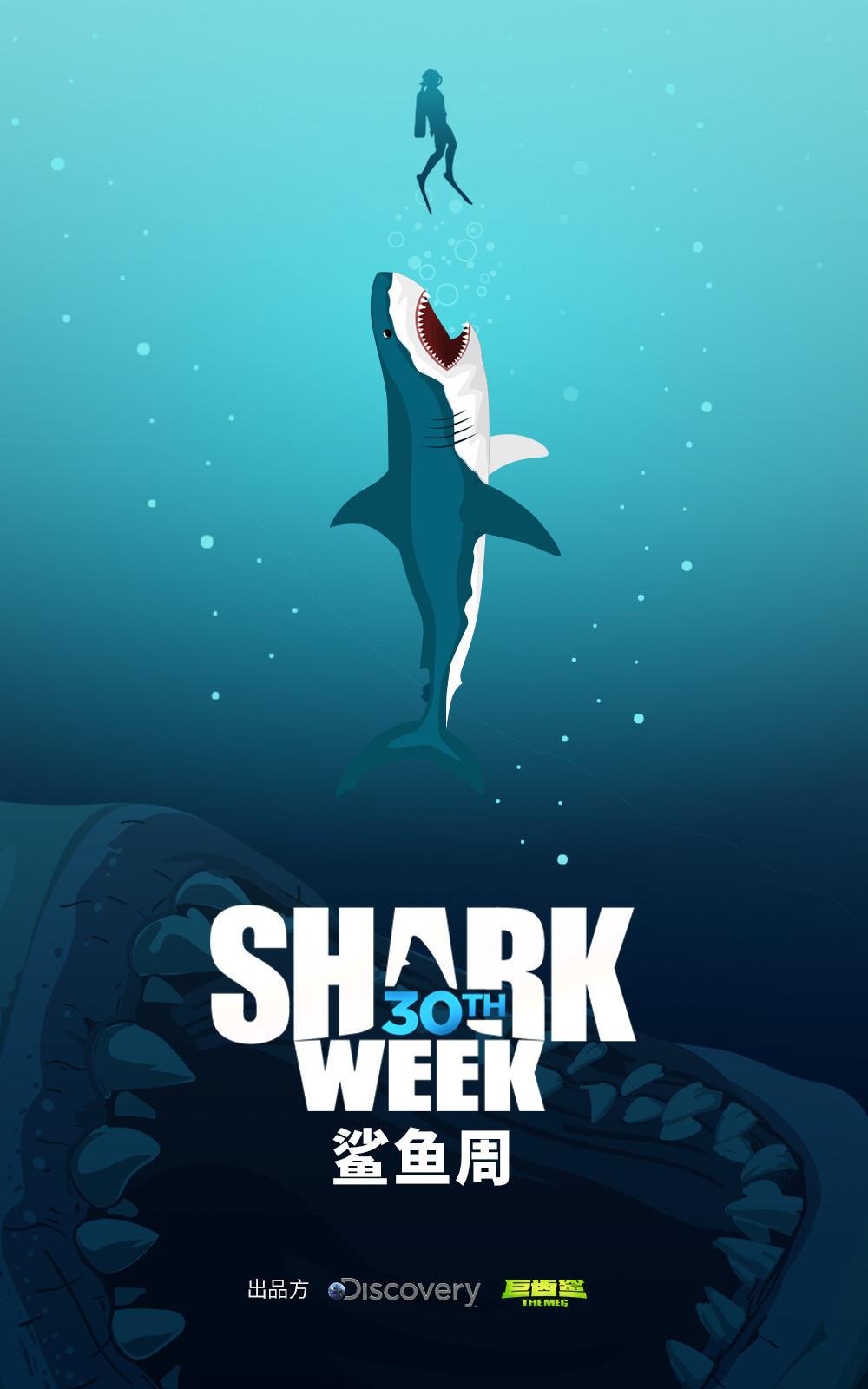 """[原创]Discovery纪录片《鲨鱼周》特辑亮相  解密""""巨齿鲨""""残暴怪举(图)"""