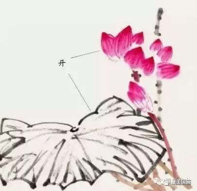 中国画技法之写意荷花画法步骤,写意荷花画法示范!图片