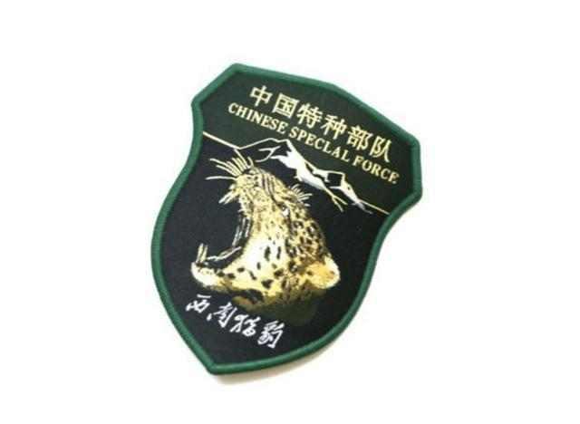 中国五大特种部队及其专属臂章,你最喜欢哪一个图片