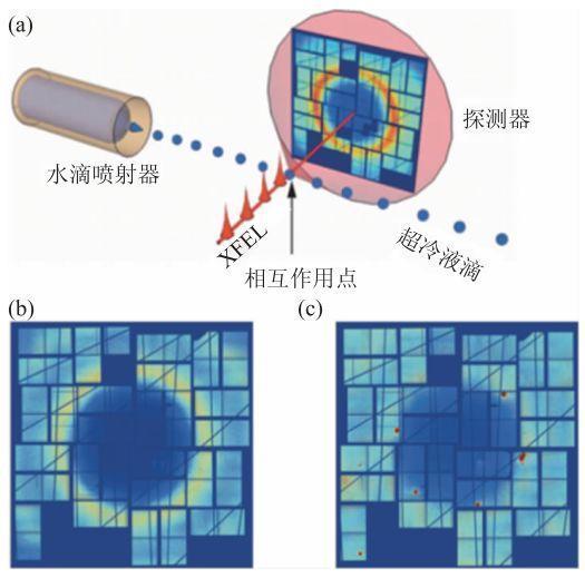 泮丙营、叶茂、封东来:X射线自由电子激光在物理学中的应用