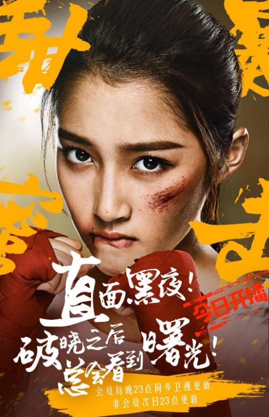 سریال چینی مبارزه شیرین