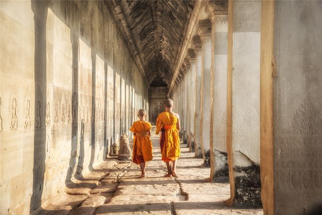 神秘东南亚小国|走进树根下的神庙,探索千年不被打扰的奇迹