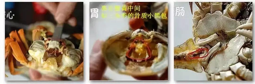 必威官网 36
