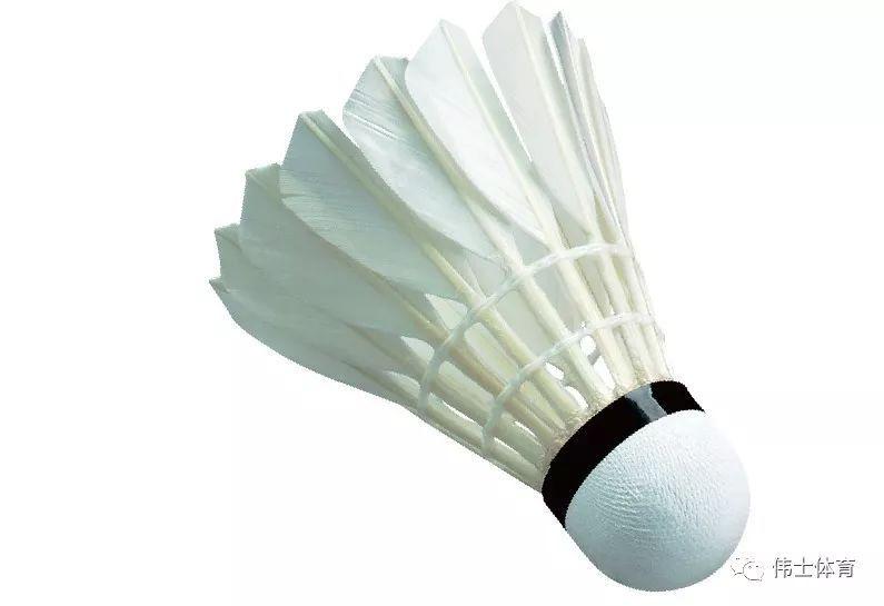 如何判断羽毛球的耐打性?【伟士装备】