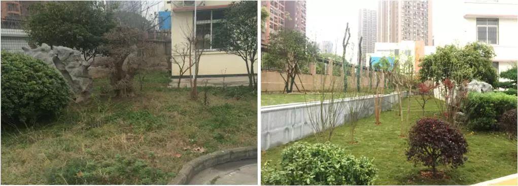 泛华实践|样板城市年限校园示范--武汉青山区建筑设计耐用海绵图片