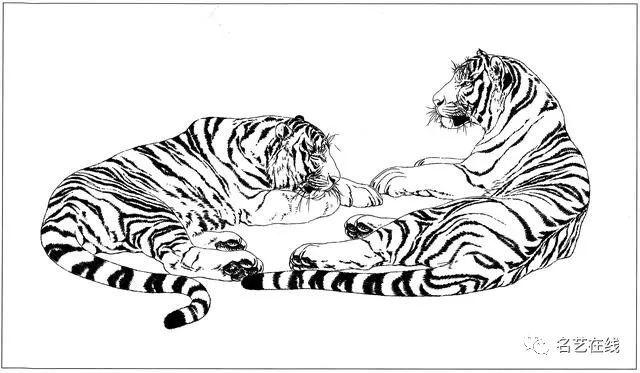 工笔画老虎的绘画过程技法 附高清白描虎60幅