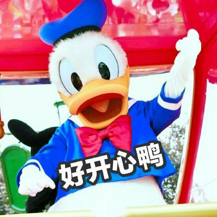 唐老鸭约人表情包:今天吃什么鸭,求安排鸭,什么时候出去玩鸭