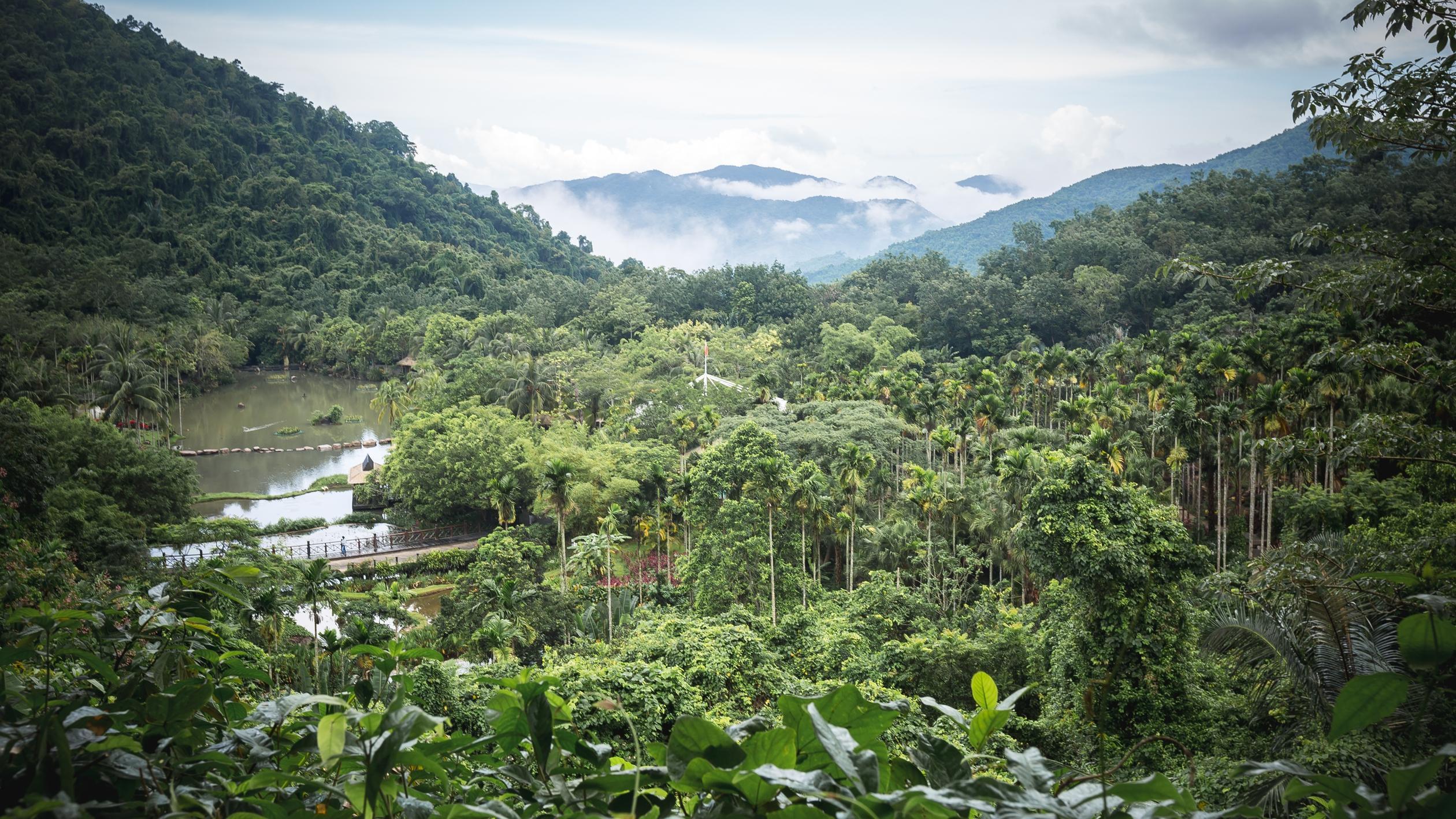 海南岛热带雨林_距三亚仅半小时车程 藏匿于热带雨林中的度假酒店 可满足你对 ...