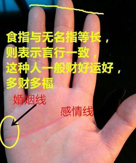 手相:食指与无名指等长,多才多福,一般财运好