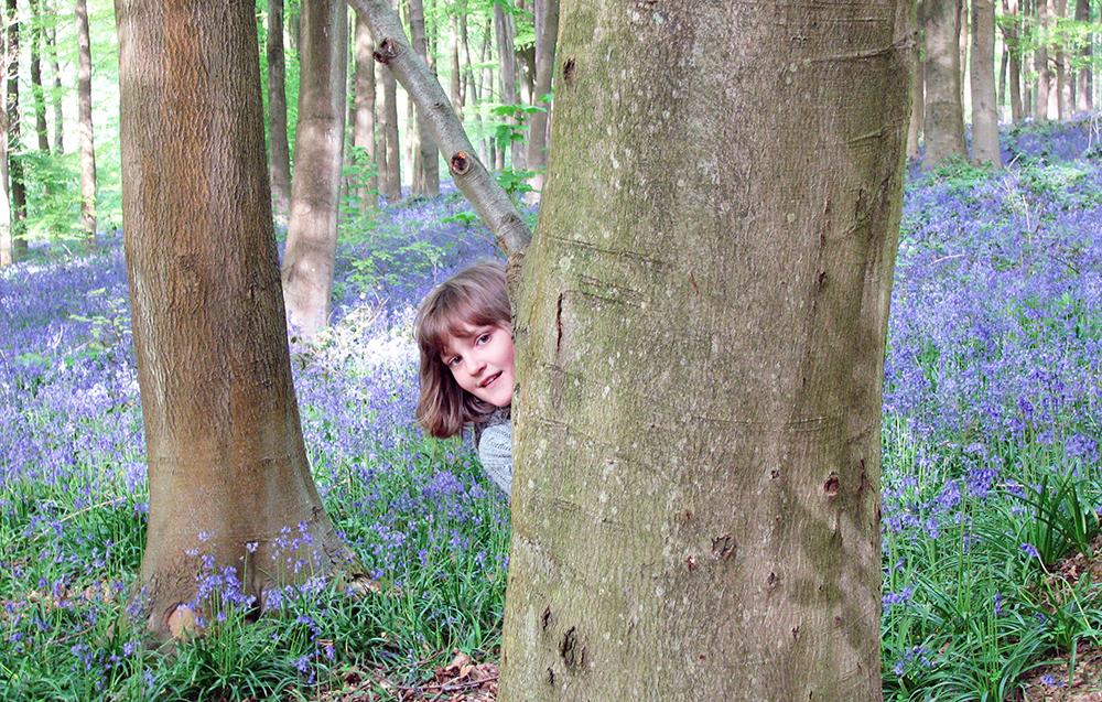 带孩子去森林:欧美国家的自然教育什么样?