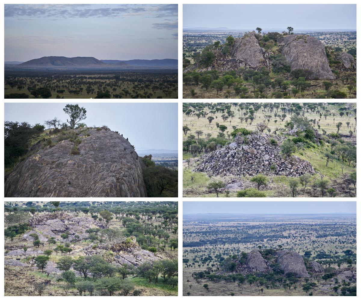 坦桑之旅(8)乘坐热气球,1000米高空观景台,完美的safari体验