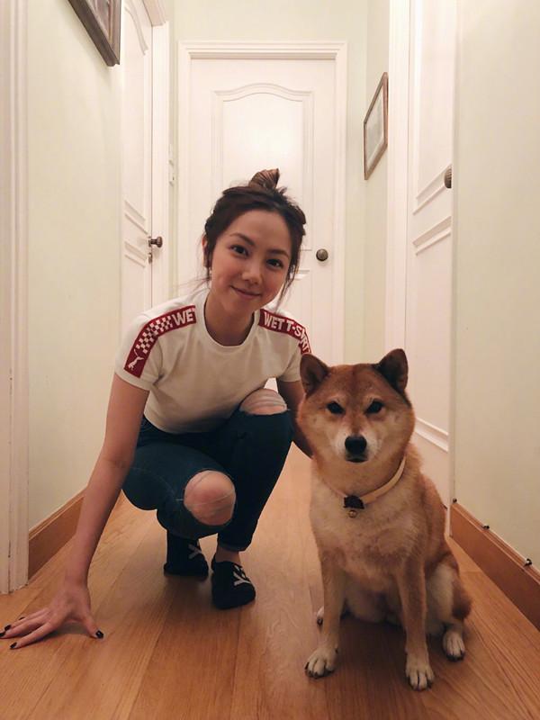 邓紫棋克服童年阴影玩狗 柴犬一脸淡定小表情亮了!
