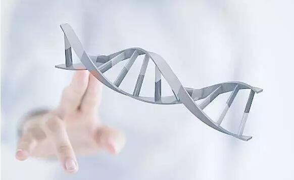 消费级基因检测的多面:娱乐化、数据生意和雷区-烽巢网