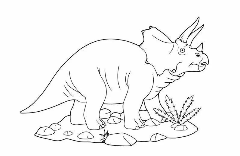 动物简笔画线描集锦,都是干货 一