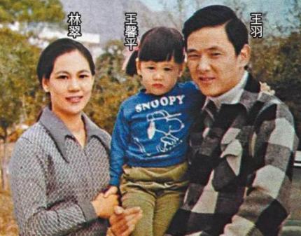 王羽竹联帮_1977年,王羽到台湾创办电影公司,同时成为台湾竹联帮的骨干成员.