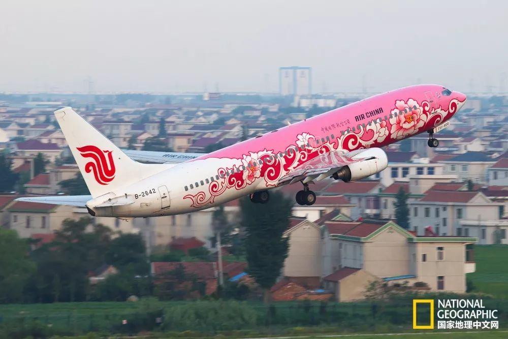 国航牡丹彩绘机从南通兴东机场起飞,富贵亮丽,中国风气韵十足