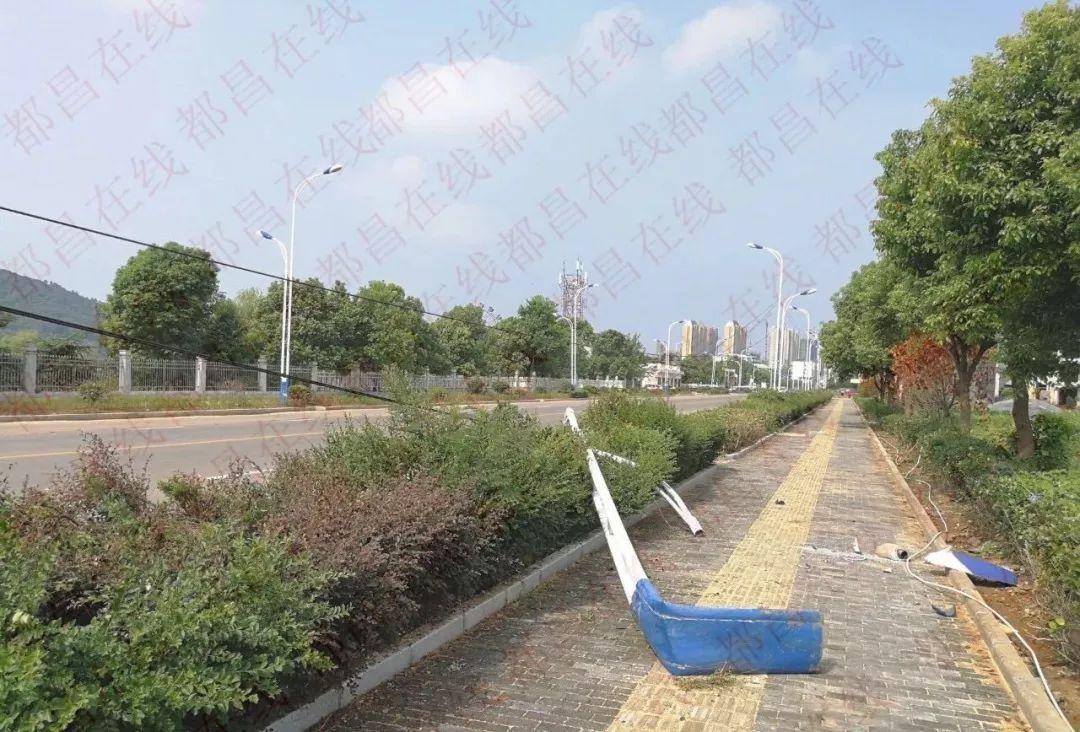 开车还是开飞机?都昌东湖大道有辆车开到了路边花坛上图片