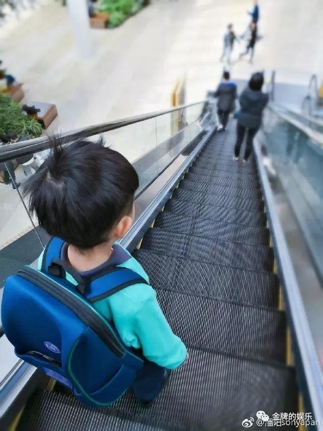 東北沒有好學校嗎?潘長江的女兒潘陽把兒子送到香港念書