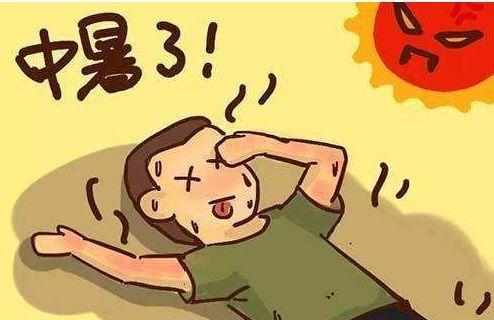 中暑的海鸥_中暑预防与急救