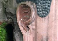 """古时候修建佛像多有在佛像上修建密室的例子,按照佛教造像仪规,在佛像上设""""藏脏洞"""",洞内装有""""五谷""""及""""五金"""",五谷象征菩萨保佑五谷丰登,五金代表菩萨保佑""""招财进宝""""。不同的是这些藏宝洞大都开在佛教的背部,但乐山大佛却开凿在佛像的心脏部位。"""