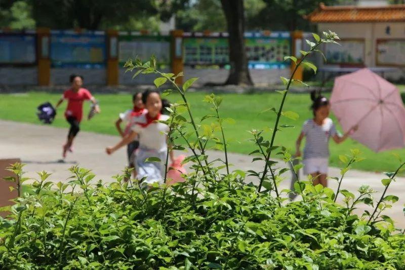 【三下乡-向阳社会实践队】趣味运动会 趣味运动会,一起动起来