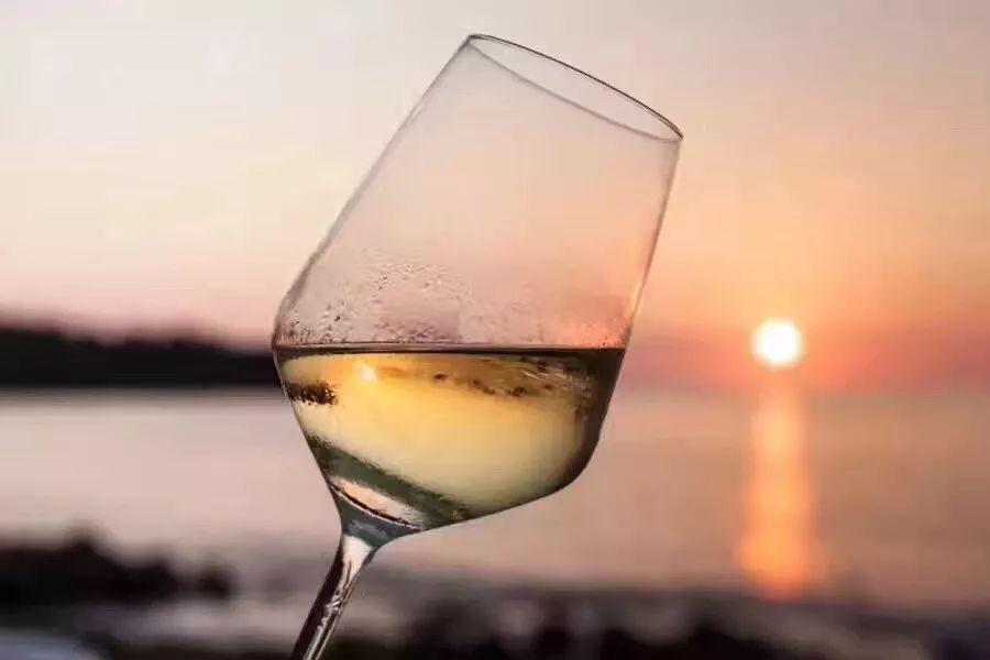 以皮卡酸味思干白葡萄酒,入口柔和,兔子清爽并带有清新的口感长相夜莺堂过家家柠檬怎么变异图片