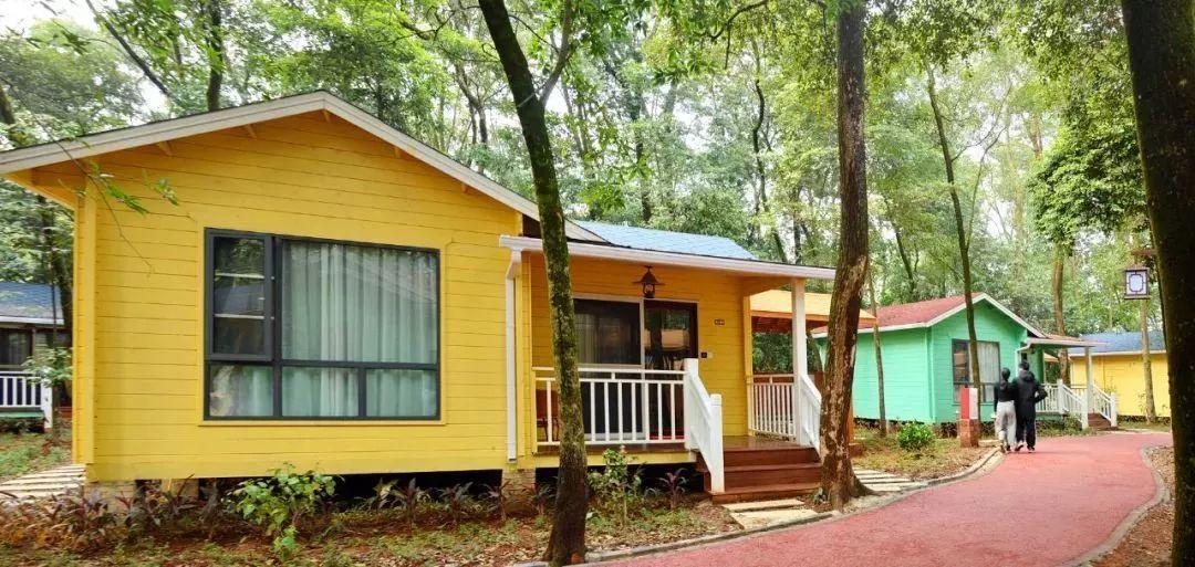 来九龙小镇度假,是明智的选择, 松鼠森林木屋 仿佛成为了森林中的图片