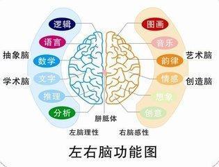 开发右脑有哪些好处