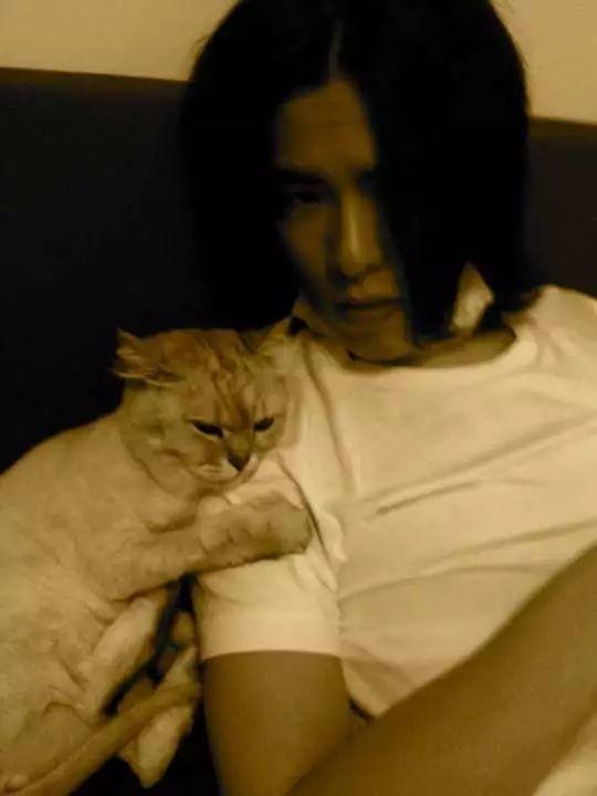萧敬腾爱猫过世哭肿双眼 白灰陪伴他13年感情深厚
