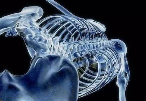 人体最坚硬的部分是_请问什么是肾上腺皮质功能亢进
