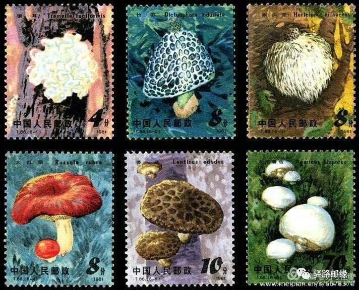 新中国邮票发行史上的今天:8月6日