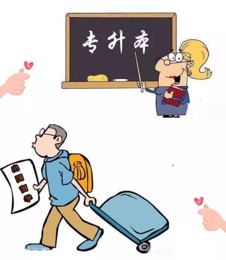 8月6日-8日初中就读志愿,专科生中考本科院校的专科专业是样的专科湖南填报满分图片