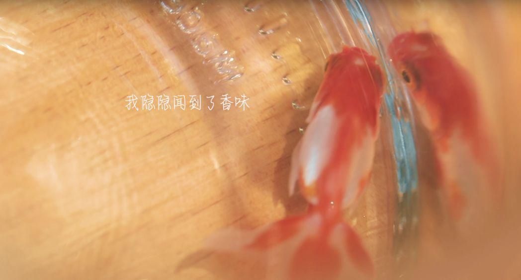 澳门太阳娱乐集团官网 22